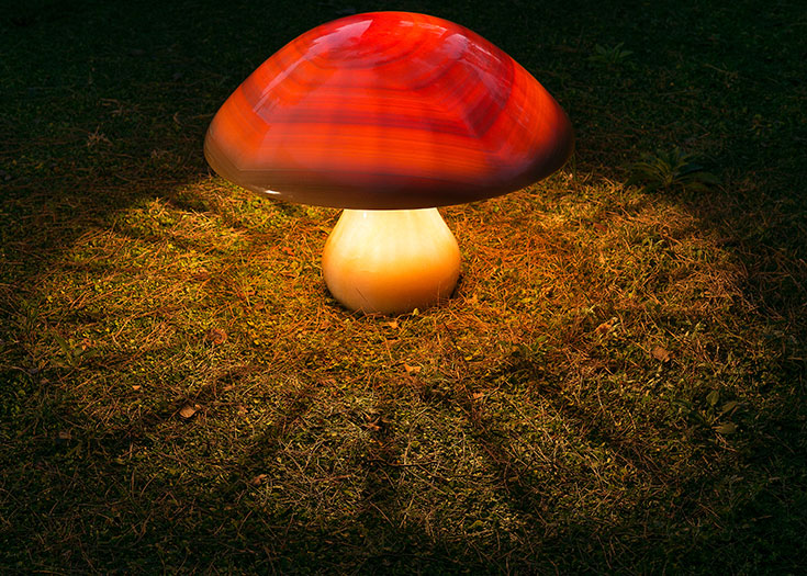 the fossilised mushroom - onyx marble, perspex - 65/65/50 cm - photo credits: George Fakaros